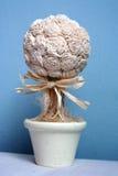 Crisol de flor 6 Imágenes de archivo libres de regalías