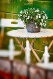 Crisol de flor todavía life- en jardín Foto de archivo libre de regalías