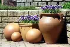 Crisol de la cerámica con las plantas de la viola del pensamiento Imagen de archivo