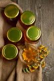 Crisoles con la miel y las bayas Fotografía de archivo