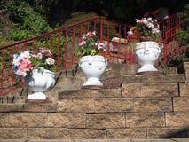Crisoles de flor decorativos Imágenes de archivo libres de regalías