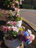 Crisoles de flor decorativos Fotografía de archivo libre de regalías
