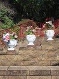 Crisoles de flor decorativos Imagenes de archivo