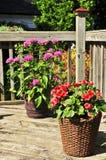 Crisoles de flor en cubierta de la casa Fotografía de archivo libre de regalías