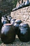 Crisoles de Kimchi fotografía de archivo libre de regalías