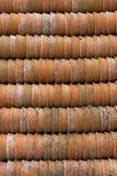 Crisoles de la planta de la terracota foto de archivo libre de regalías