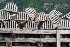 Crisoles de langosta fotografía de archivo