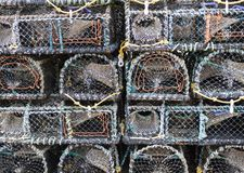 Crisoles de langosta en Brighton Fotos de archivo