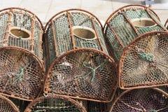 Crisoles de langosta en Brighton Fotografía de archivo libre de regalías