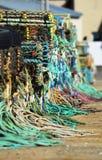 Crisoles de langosta en Brighton Fotos de archivo libres de regalías