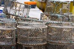 Crisoles de langosta en Brighton Imagen de archivo libre de regalías