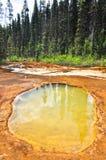 Crisoles de pintura en el parque nacional de Kootenay Imagen de archivo libre de regalías