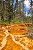 Crisoles de pintura en el parque nacional de Kootenay, Canadá Fotografía de archivo