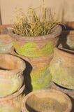 Crisoles viejos de la terracota Imagenes de archivo