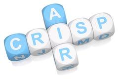 Crisp Air. Crossword on white background 3d render stock illustration