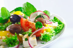 Crisp appetizing Greek salad Stock Photography