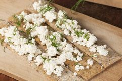 Crisp bread with curd Royalty Free Stock Image