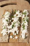 Crisp bread with curd Stock Photography