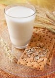 Crisp bread with milk Royalty Free Stock Images