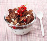 Crisp breakfast cereal and red currants Royalty Free Stock Photography