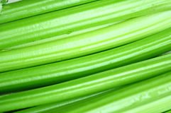 Crisp celery. Closeup of green crisp celery stock photos