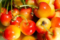 Crisp cherries Stock Image