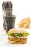 Crisp chicken burger with tomato onion cheese lett Stock Images