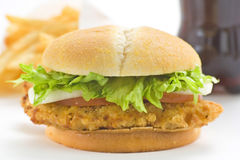 Crisp chicken burger tomato onion cheese lettuce stock photography