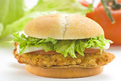 Crisp chicken burger tomato onion cheese lettuce Royalty Free Stock Photo