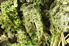 Crisp fresh kale at the market Stock Image