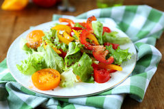 Crisp fresh vegetable salad Royalty Free Stock Photos