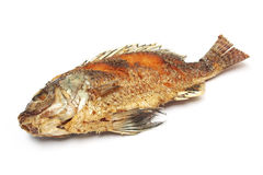Crisp fried Tilapia fish Stock Images