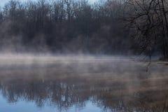 Crisp morning foggy pond royalty free stock photo