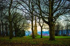 Crisp Morning. A winter stroll through the park captured in this crisp and sharp image. The buildings in the extreme background contrast sharply with the leaves Stock Image