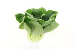 Crisp pak choi. Crisp white and green pak choi on a light background Royalty Free Stock Photos