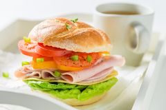 Crisp sandwich with ham, cheese, tomatoes and tea Stock Image