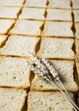 Crispbread. Bread is one of the basic kinds of food in Europen countries royalty free stock photography