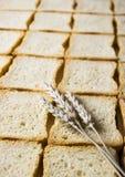 Crispbread Royalty Free Stock Photography