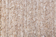 Crispbread background, texture Stock Photos