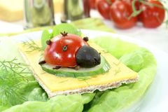 Crispbread with cheese, lettuce and ladybug Stock Image