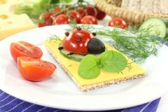 Crispbread with ladybug Royalty Free Stock Photos