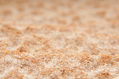 Crispbread surface Royalty Free Stock Images