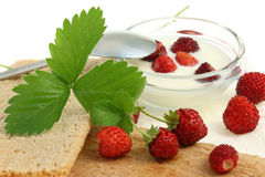 Crispbread and wild berries Stock Images