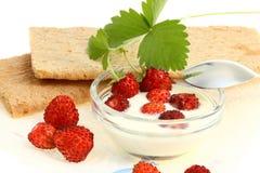Crispbread and wild berries. Royalty Free Stock Image