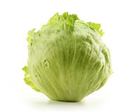 Crisphead, Iceberg, Lettuce on white Royalty Free Stock Photography