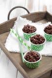 Crispies del chocolate Fotografía de archivo libre de regalías
