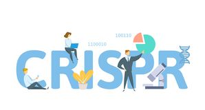 CRISPR, τεχνολογία έκδοσης γονιδιώματος Έννοια με τις λέξεις κλειδιά, τις επιστολές και τα εικονίδια Επίπεδη διανυσματική απεικόν διανυσματική απεικόνιση