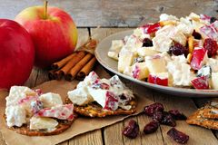 Crisps with autumn topping of chicken, apples, nuts and cranberries Stock Images