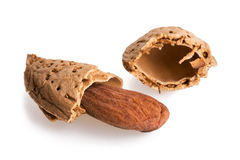 Crispy almond royalty free stock photography