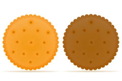 Crispy biscuit cookie vector illustration Royalty Free Stock Photos